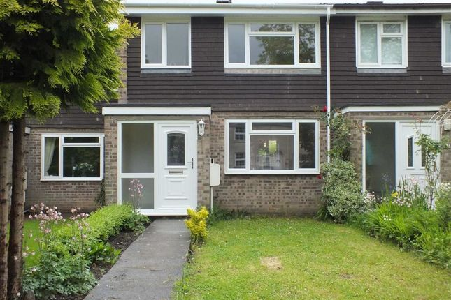 Thumbnail Terraced house to rent in Wyke Road, Trowbridge, Wiltshire