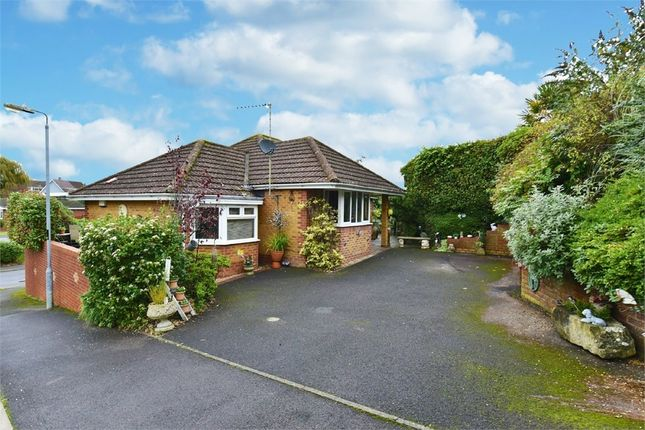 Thumbnail Detached bungalow for sale in The Homelands, Warminster, Wiltshire