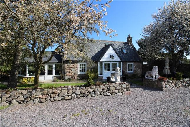 Thumbnail Cottage for sale in Aboyne, Aberdeenshire
