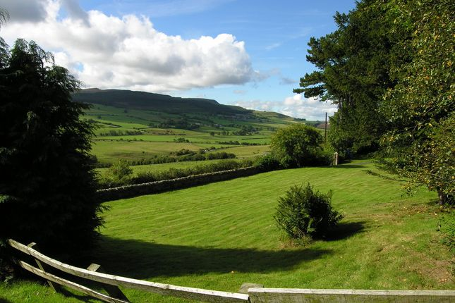 Thumbnail Land for sale in Hillside, Rothbury, Morpeth