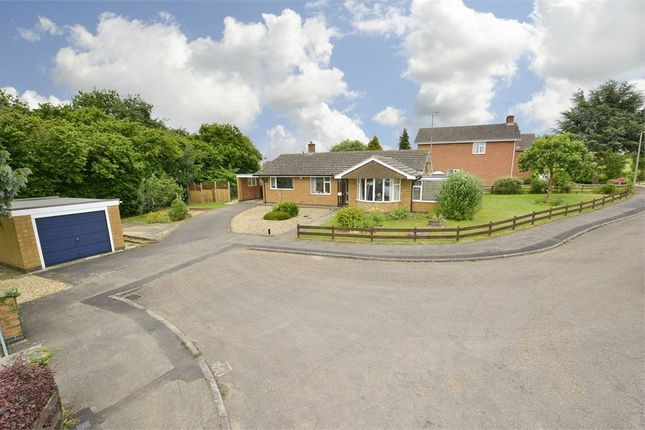 Thumbnail Detached bungalow for sale in Latymer Close, Braybrooke, Leicestershire