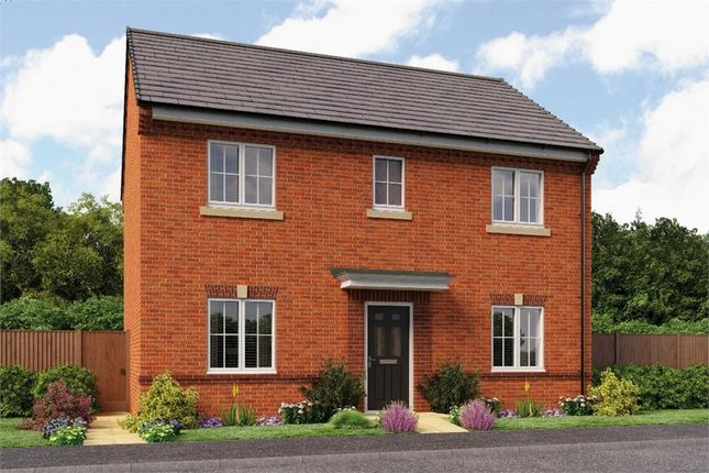 "Thumbnail Detached house for sale in ""The Buchan"" at Backworth, Newcastle Upon Tyne"