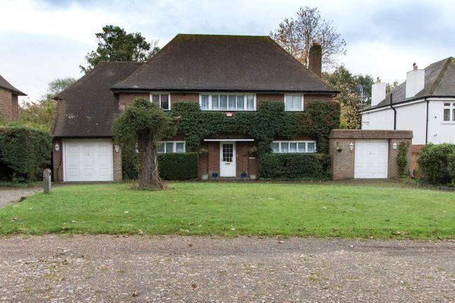 Thumbnail Detached house for sale in Ranmore Avenue, Croydon