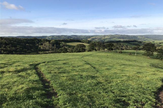Pasture Land of Longdown, Exeter, Devon EX6