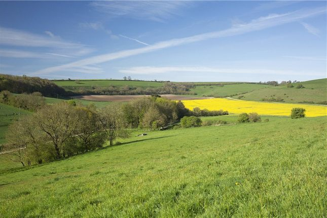 Thumbnail Farm for sale in Alton Pancras, Dorchester