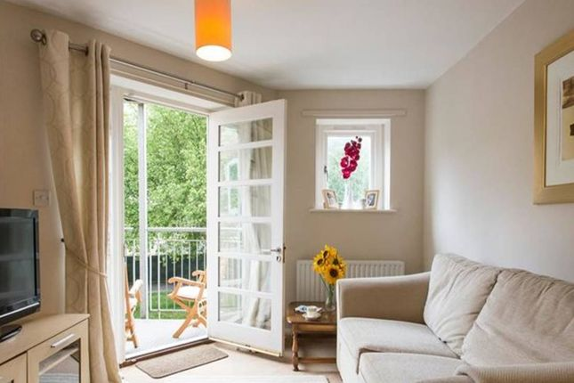 Thumbnail Flat to rent in Hornbeam Square, London