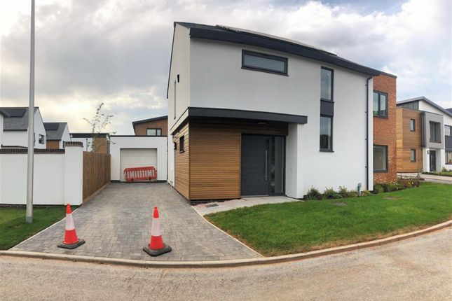 Thumbnail Detached house to rent in Edmunds Way, Exeter