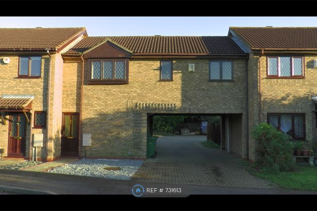 Front View of The Rowans, Milton, Cambridge CB24