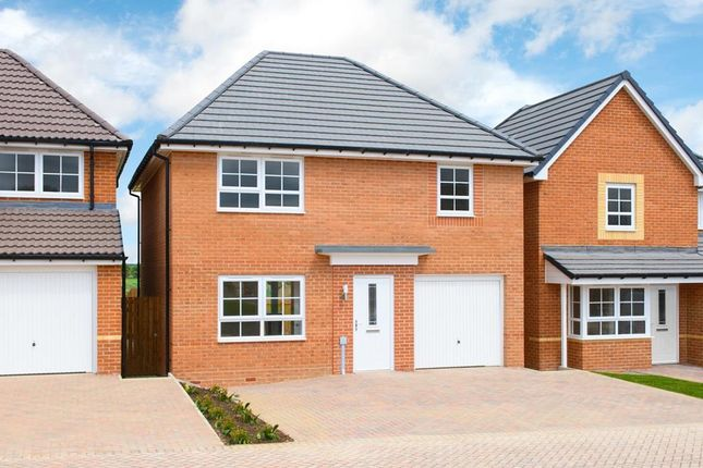 """4 bed detached house for sale in """"Windermere"""" at Tenth Avenue, Morpeth NE61"""
