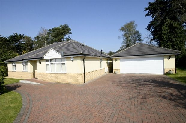 Thumbnail Detached bungalow for sale in St Leonards, Ringwood, Hampshire