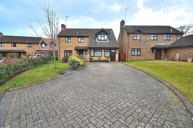 Thumbnail Detached house for sale in Tansy Close, West Hunsbury, Northampton