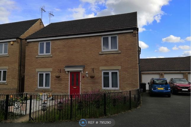 Thumbnail Detached house to rent in Bayston Court, Peterborough