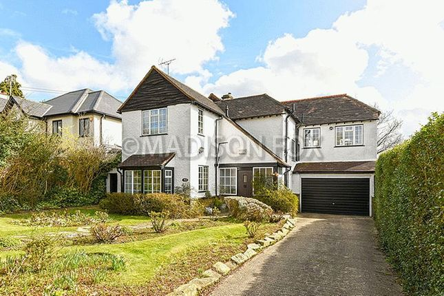 Thumbnail Detached house for sale in Spring Grove, Loughton