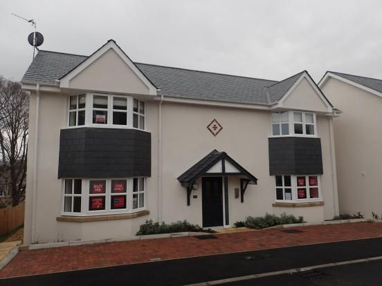 Thumbnail Flat to rent in Llys Adda, Bangor, Gwynedd
