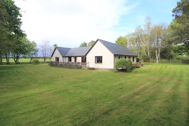 Thumbnail Detached bungalow for sale in Newton Of Struthers, Kinloss