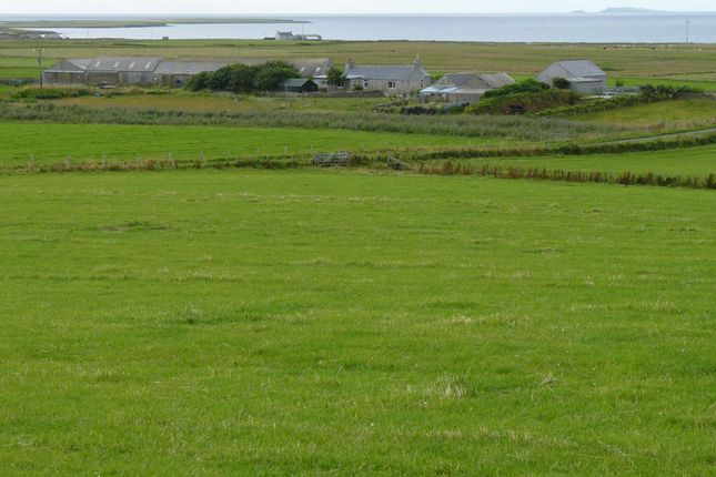 Thumbnail Farm for sale in Stronsay, Orkney