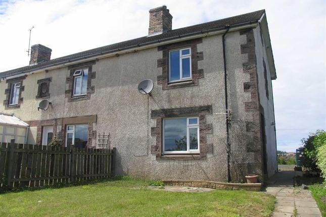 Thumbnail Cottage to rent in Norham, Berwick-Upon-Tweed