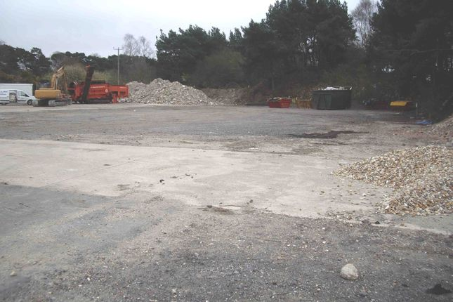 Thumbnail Land to let in Puddletown Road, Wareham
