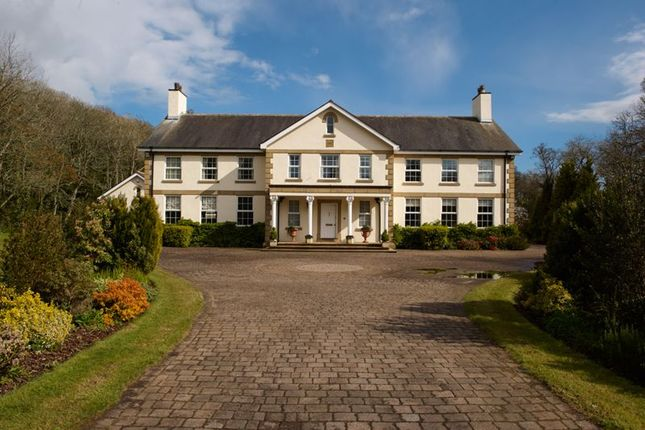 Thumbnail Detached house for sale in Barrowdale House, Sir Georges Bridge, Abbeylands