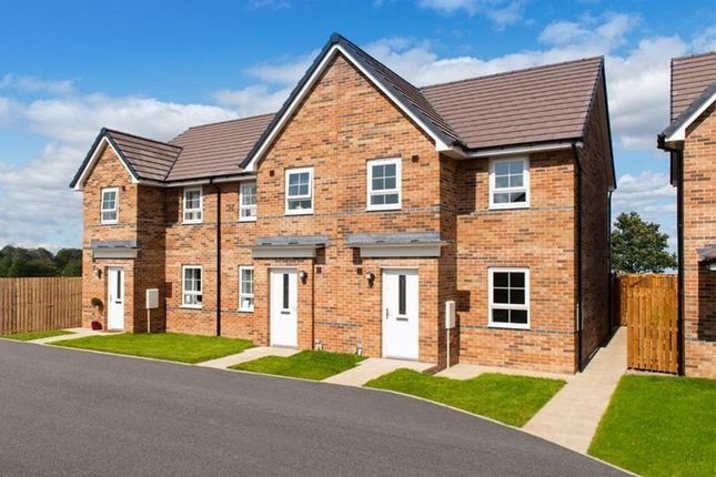 "Thumbnail Terraced house for sale in ""Palmerston"" at Ponds Court Business, Genesis Way, Consett"