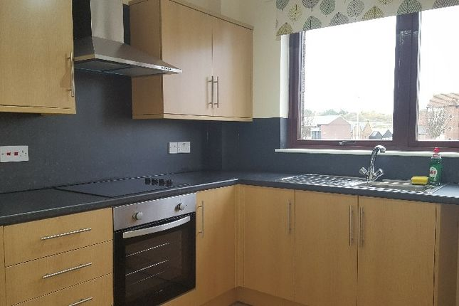 Thumbnail Flat to rent in Almerie Close, Arbroath, Angus