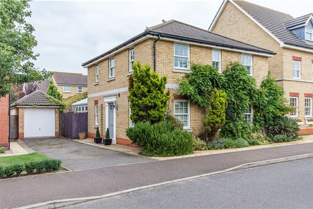 Thumbnail Detached house for sale in The Linnets, Cottenham, Cambridge