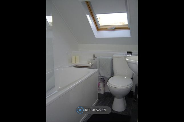 Thumbnail Terraced house to rent in Albany Road, Kensington, Liverpool