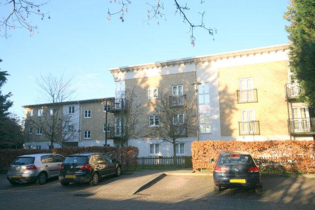 Thumbnail Flat to rent in Revere Way, Ewell, Epsom