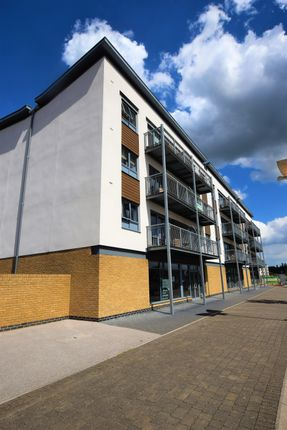 Thumbnail Flat to rent in Ballantyne Drive, Colchester