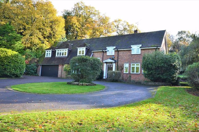 Homes For Sale In Tilford Buy Property In Tilford