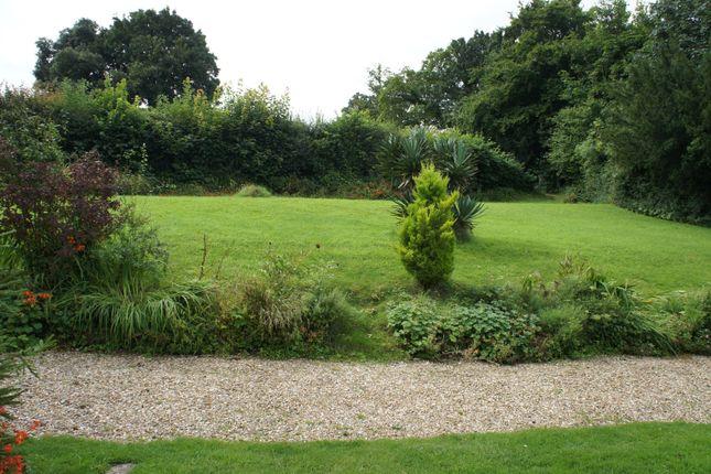 Garden of Lodge Hill, East Coker BA22