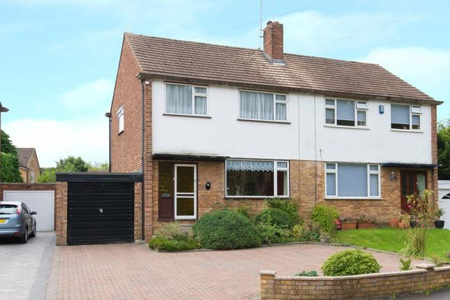 Thumbnail Semi-detached house for sale in Laurel Close, Hutton, Brentwood, Essex