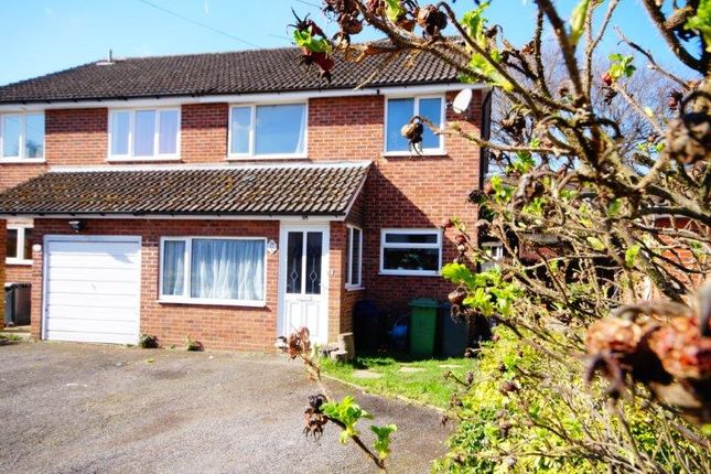 Thumbnail Semi-detached house for sale in Forest Road, Bordon