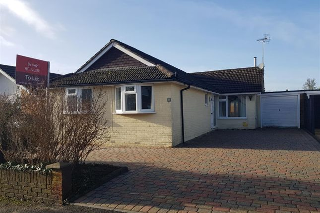 Thumbnail Detached bungalow to rent in Greenfield Crescent, Waterlooville