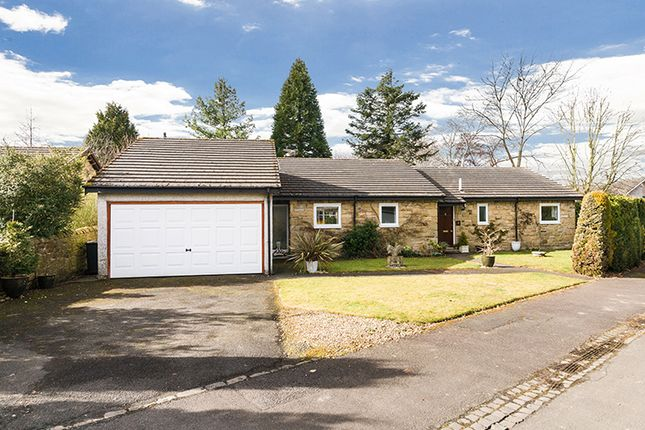 Thumbnail Detached bungalow for sale in 8 Willow Dyke, Corbridge, Northumberland