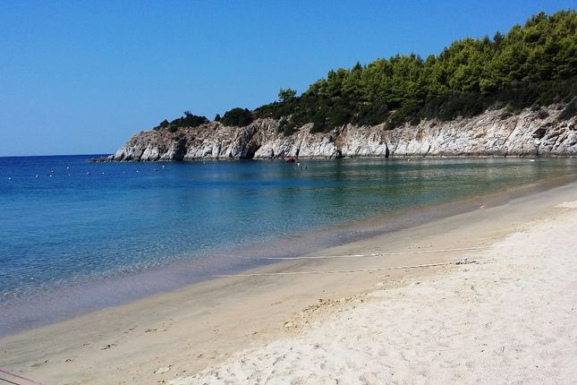 Thumbnail Land for sale in Sikea, Chalkidiki, Gr