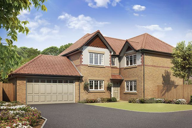 Thumbnail Detached house for sale in Gateford Park, Gateford, Worksop