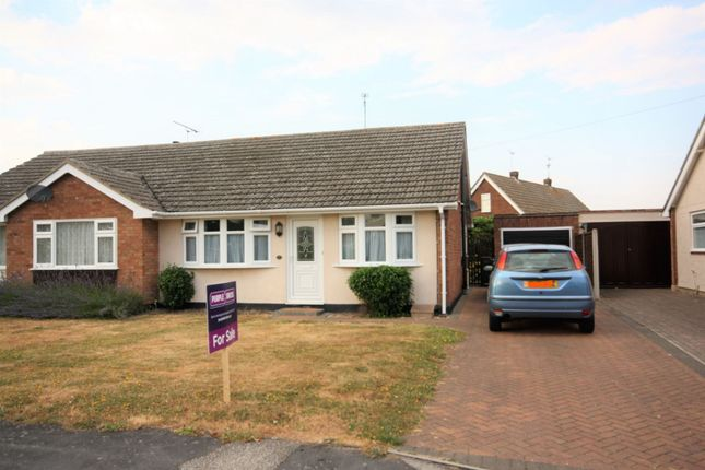 Thumbnail Bungalow for sale in Chestnut Avenue, Chelmsford