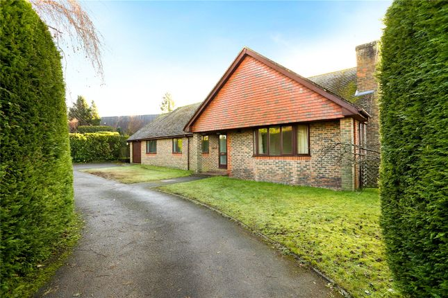 Thumbnail Detached bungalow for sale in Portsmouth Road, Liphook, Hampshire