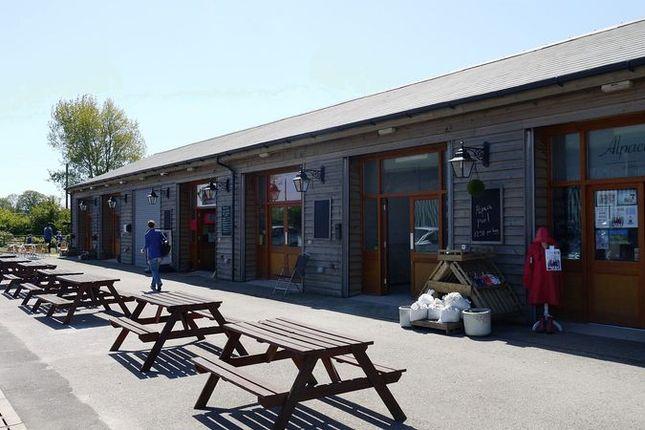 Thumbnail Retail premises to let in Burmarsh, Romney Marsh