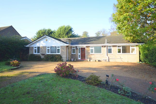 Thumbnail Detached bungalow to rent in High Road, Chipstead, Coulsdon