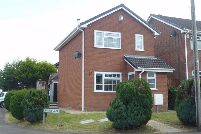 Thumbnail Detached house to rent in Caerleon, Brookfield Road, Welshpool, Powys