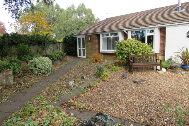 Thumbnail Bungalow to rent in Smugglers Lane North, Highcliffe, Christchurch