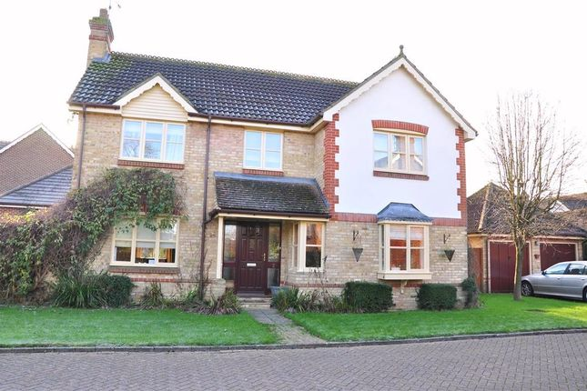 Thumbnail Detached house to rent in Uppark Gardens, Horsham