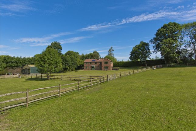 Paddocks of Headley Mill Farm, Standford Lane, Standford, Hampshire GU35