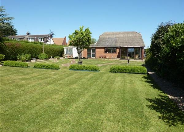 Thumbnail Detached bungalow for sale in Louth Road, Scartho, Grimsby
