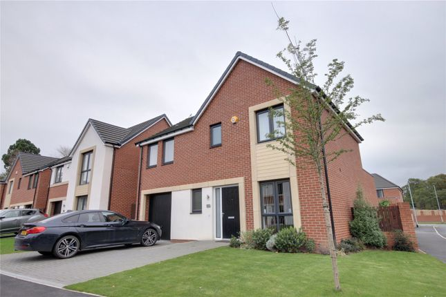 Thumbnail Detached house to rent in Park Wynd, Middlesbrough