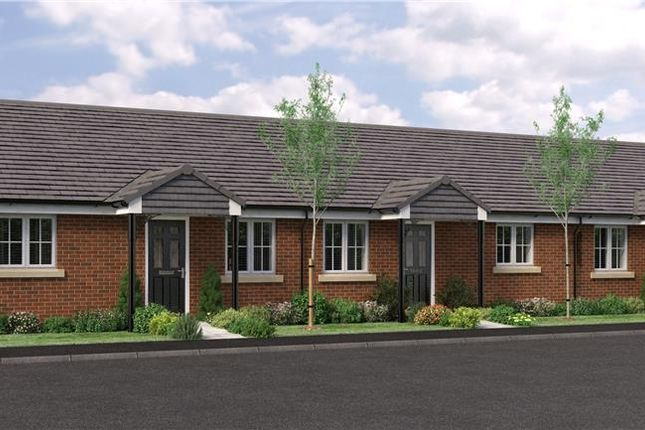 """Bungalow for sale in """"The Bede- Terraced"""" at Buttercup Gardens, Blyth"""