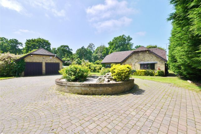 Thumbnail Detached house for sale in Mores Lane, Brentwood, Essex