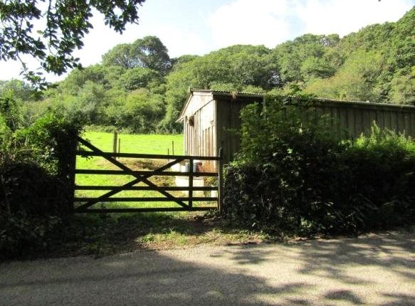 Picture No. 4 of Adjoining Governs Wood, Tregavethan, Truro, Cornwall TR4